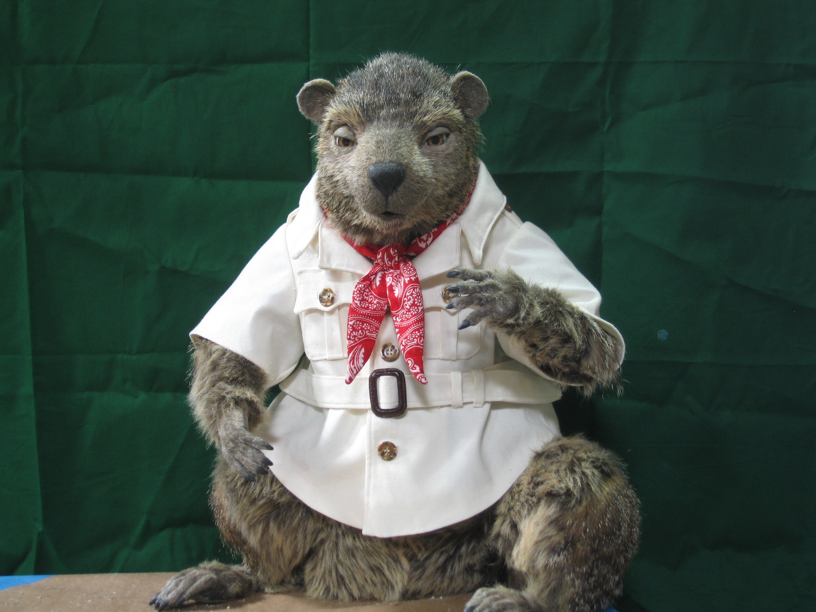 the character shop  gus the groundhog celebrates his 40th